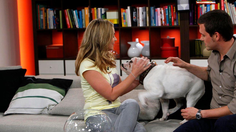 fruehstuecksfernsehen-studiohund-lotte-in-action-im-studio-055 - Bildquelle: Ingo Gauss