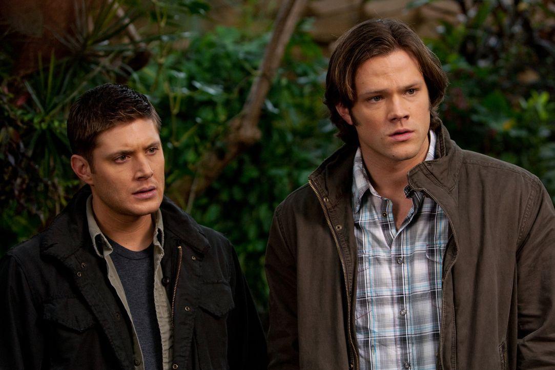 Sam (Jared Padalecki, r.) und Dean (Jensen Ackles, l.) werden von zwei wütenden Jägern getötet und finden sich im Himmel wieder. Dort treffen sie au... - Bildquelle: Warner Brothers