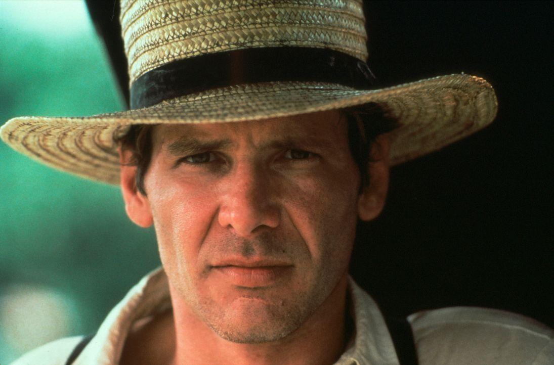 Bei seinen Ermittlungen kommt Polizeidetektiv John Book (Harrison Ford) einem polizeiinternen Drogenkartell auf die Spur ... - Bildquelle: Paramount Pictures