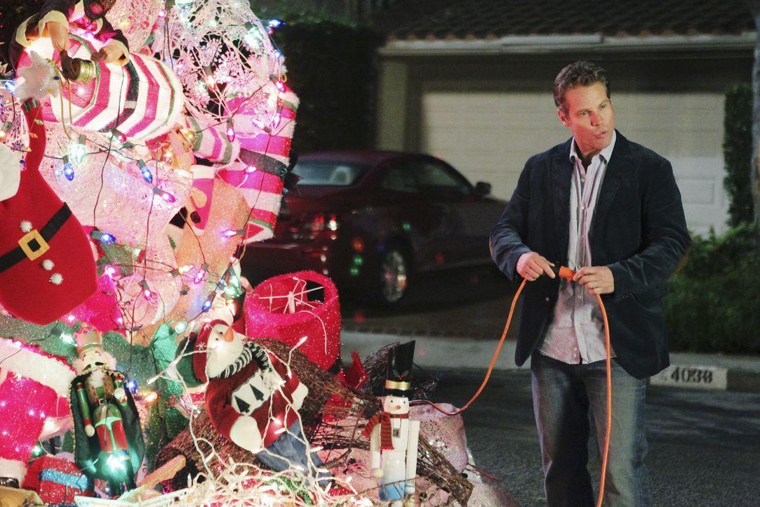 Ein ganz besonderer Valentinstag: Bobby (Brian Van Holt) ... - Bildquelle: 2010 ABC INC.