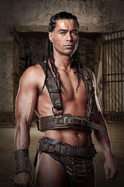 """Barca (Antonio Te Maioha), die """"Bestie von Karthago"""", ist einer der erfolgreichsten Gladiatoren von Batiatu. Er dient als Leibwächter und Mörder für... - Bildquelle: 2009 Starz Entertainment, LLC"""
