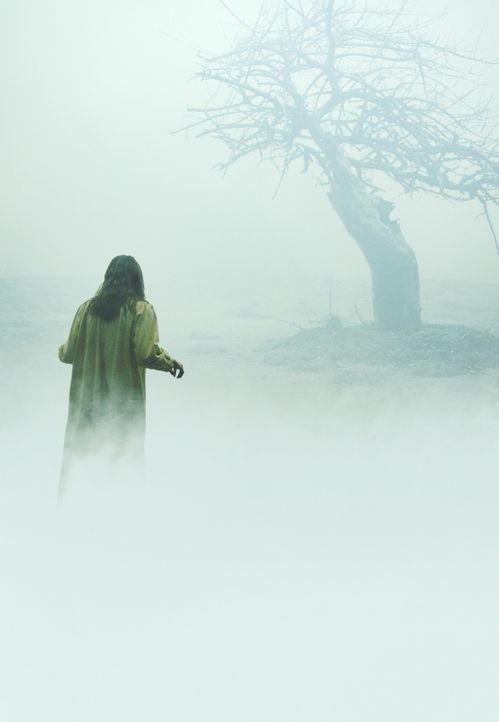 Der Exorzismus von Emily Rose (Jennifer Carpenter) ... - Bildquelle: Sony Pictures Television International. All Rights Reserved.