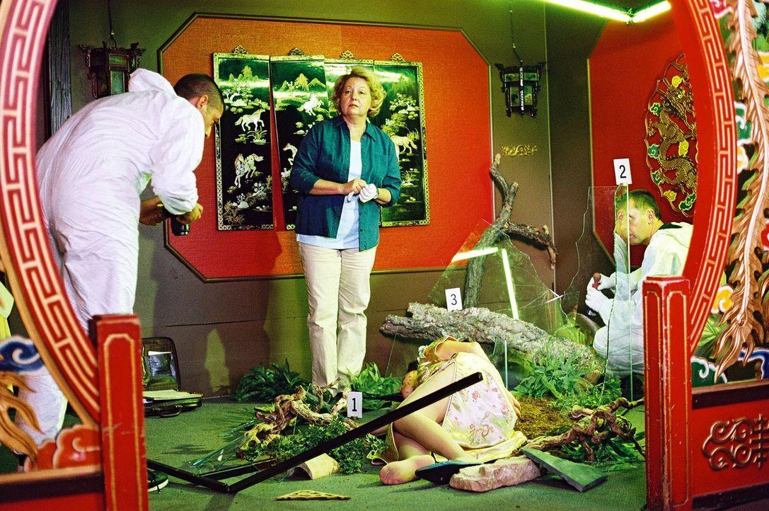 Dr. Reiter (Sarah Camp, M.) untersucht die Leiche, die in einem Terrarium aufgefunden wurde. - Bildquelle: Christian A. Rieger Sat.1