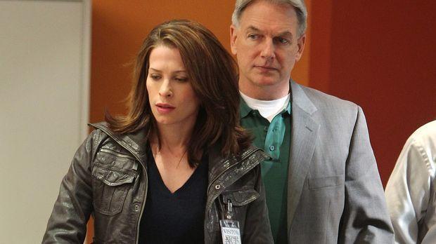 Gibbe (Mark Harmon, r.) ermittelt im Mordfall von Travis Wooten. Um etwas her...