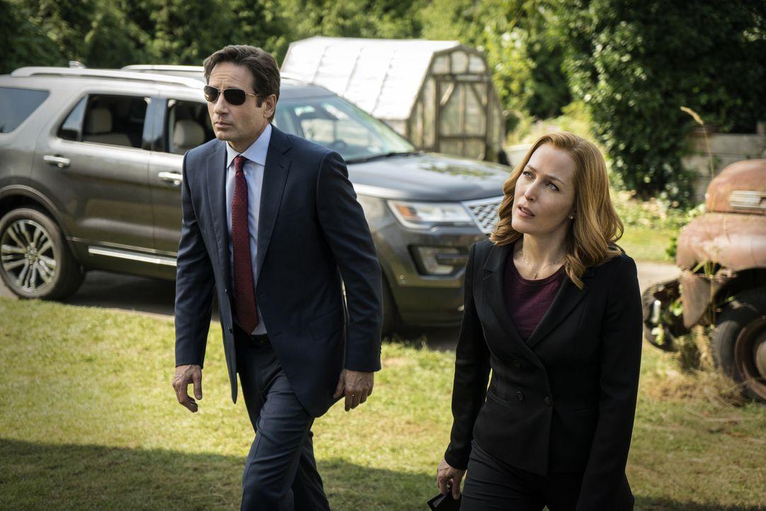 Bei ihren Nachforschungen entdecken Mulder (David Duchovny, l.) und Scully (Gillian Anderson, r.) ein seltsames Labor, in dem Genexperimente durchge... - Bildquelle: Ed Araquel 2016 Fox and its related entities.  All rights reserved.