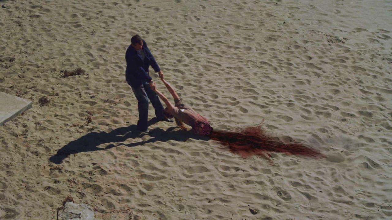 Sandshark - Bildquelle: WVG Medien // auf DVD und Blu-ray erhältlich