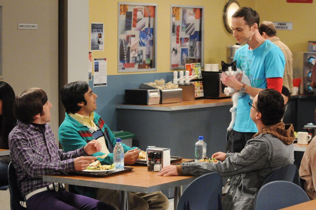 Sheldon (Jim Parsons, 2.v.r.) zeigt seinen Freunden Leonard (Johnny Galecki, r.), Wolowitz (Simon Helberg, l.) und Koothrappali (Kunal Nayyar, 2.v.l... - Bildquelle: Warner Bros. Television
