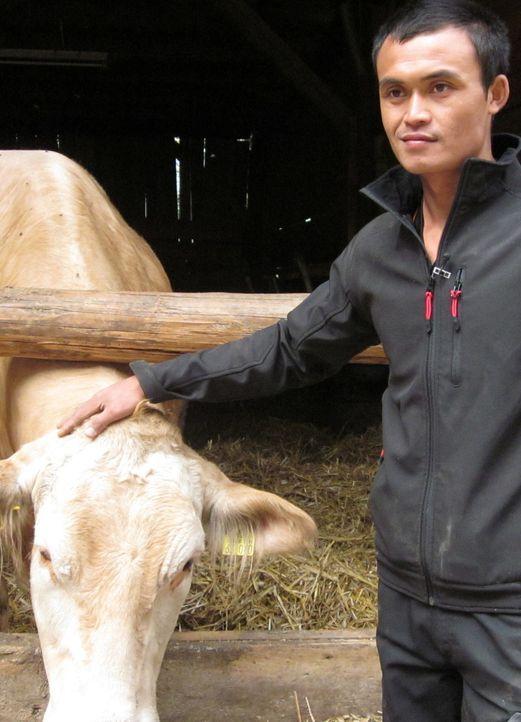 Der thailändische Bauer Noy ist gespannt, was ihn in Deutschland bei seinem Job-Tausch-Abenteuer alles erwartet ... - Bildquelle: kabel eins