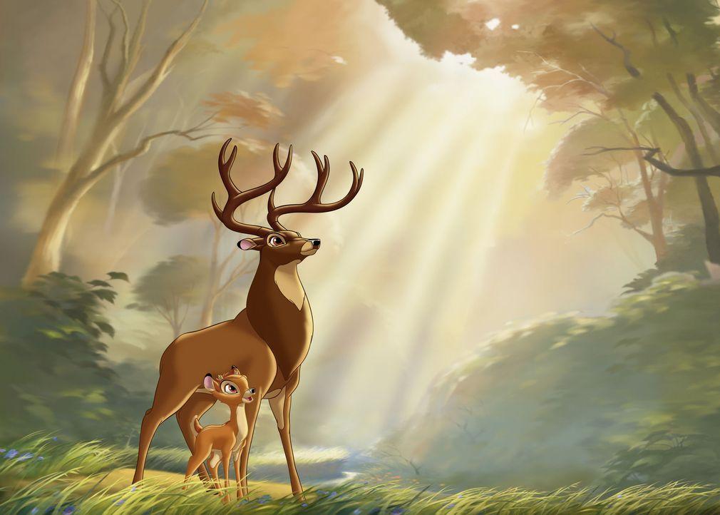 Nachdem Bambi (vorne) seine Mutter verloren hat, muss sein Vater (hinten), der Herr der Wälder, den jungen Hirsch allein aufziehen. Doch das ist ga... - Bildquelle: Disney  All rights reserved