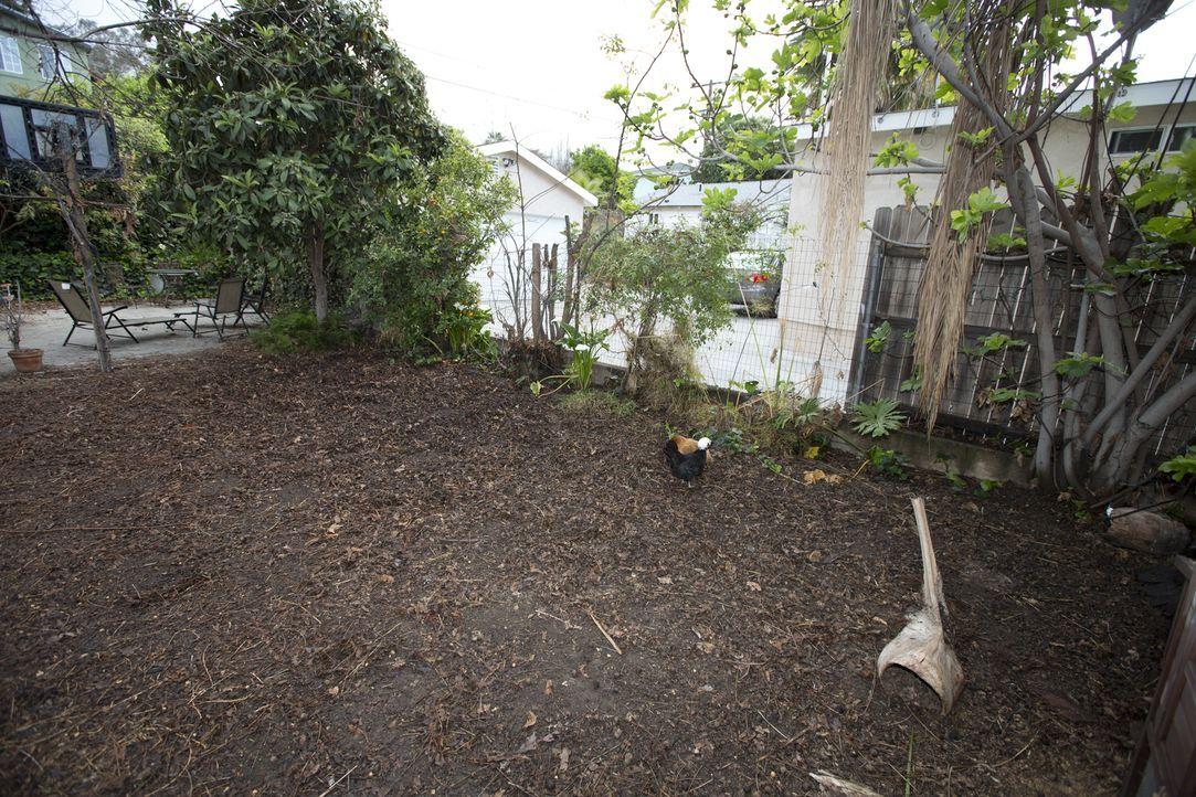 Die Künstler Kevin und Sara wünschen sich nichts mehr, als einen Garten, in dem sie auch mal den ein oder anderen spontanen Auftritt hinlegen können... - Bildquelle: 2013, DIY Network/Scripps Networks, L.L.C. All rights Reserved