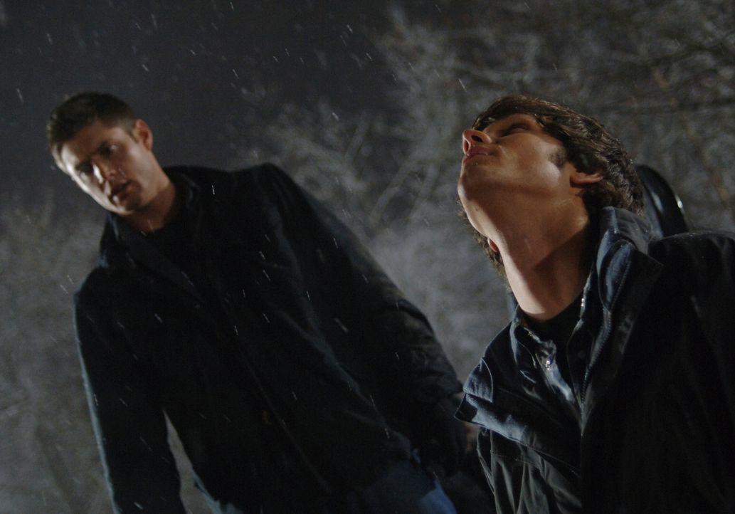 Um den mysteriösen Truck zu stoppen, müssen Sam (Jared Padalecki, r.) und Dean (Jensen Ackles, l.) einige Gefahren auf sich nehmen ... - Bildquelle: Warner Bros. Television