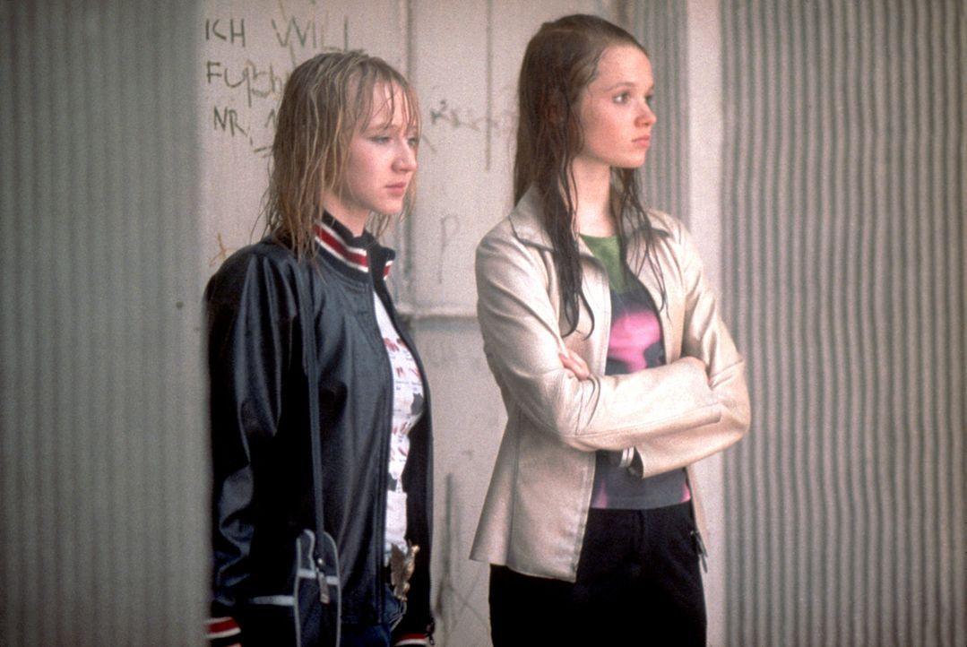 Als Steffi (Karoline Herfurth, r.) zufällig erfährt, dass ihr Vater eine Affäre mit einer anderen Frau hat, versucht sie mit Hilfe ihrer besten F... - Bildquelle: 2003 Sony Pictures Television International. All Rights Reserved.