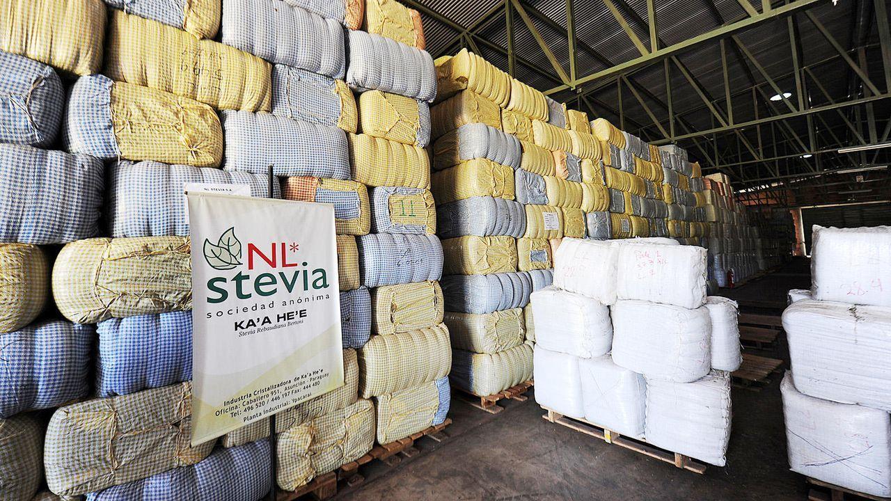 Vorteil für die Bauern - Bildquelle: AFP / Norberto Duarte