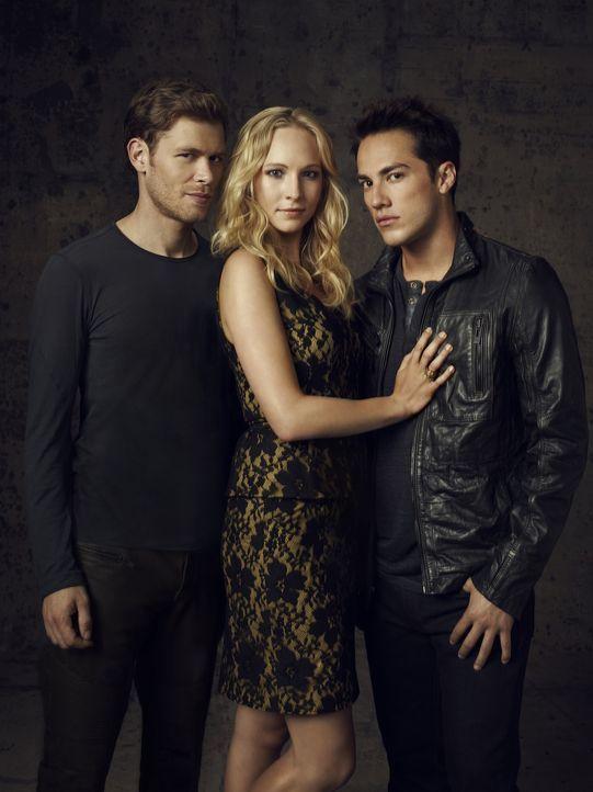 (4. Staffel) - Auch, wenn sich Caroline (Candice Accola, M.) längst für Tyler (Michael Trevino, r.) entschieden hat, wird Klaus (Joseph Morgan, l.)... - Bildquelle: Warner Brothers
