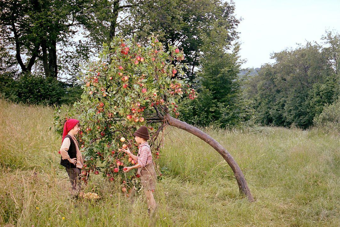 Kasperl (Martin Stührk, l.) und sein Freund Seppel (Manuel Steitz, r.) üben das Jonglieren mit Äpfeln ? - Bildquelle: Constantin Film Produktion GmbH