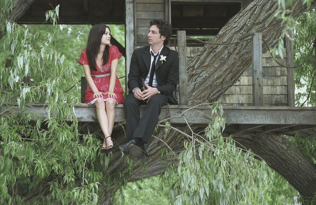 Michael (Zach Braff, r.) steckt in einer tiefen Sinnkrise. Nur Kim (Rachel Bilson, l.) kann ihn aufmuntern. Doch das hat fatale Folgen für seine Be... - Bildquelle: DreamWorks Pictures