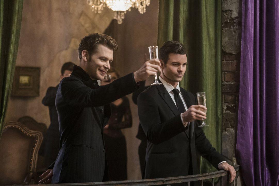 Klaus (Joseph Morgan, l.) und Elijah (Daniel Gillies, r.) machen sich auf die Suche nach einem gefährlichen und treuen Diener des Bösen und bekommen... - Bildquelle: 2016 Warner Brothers