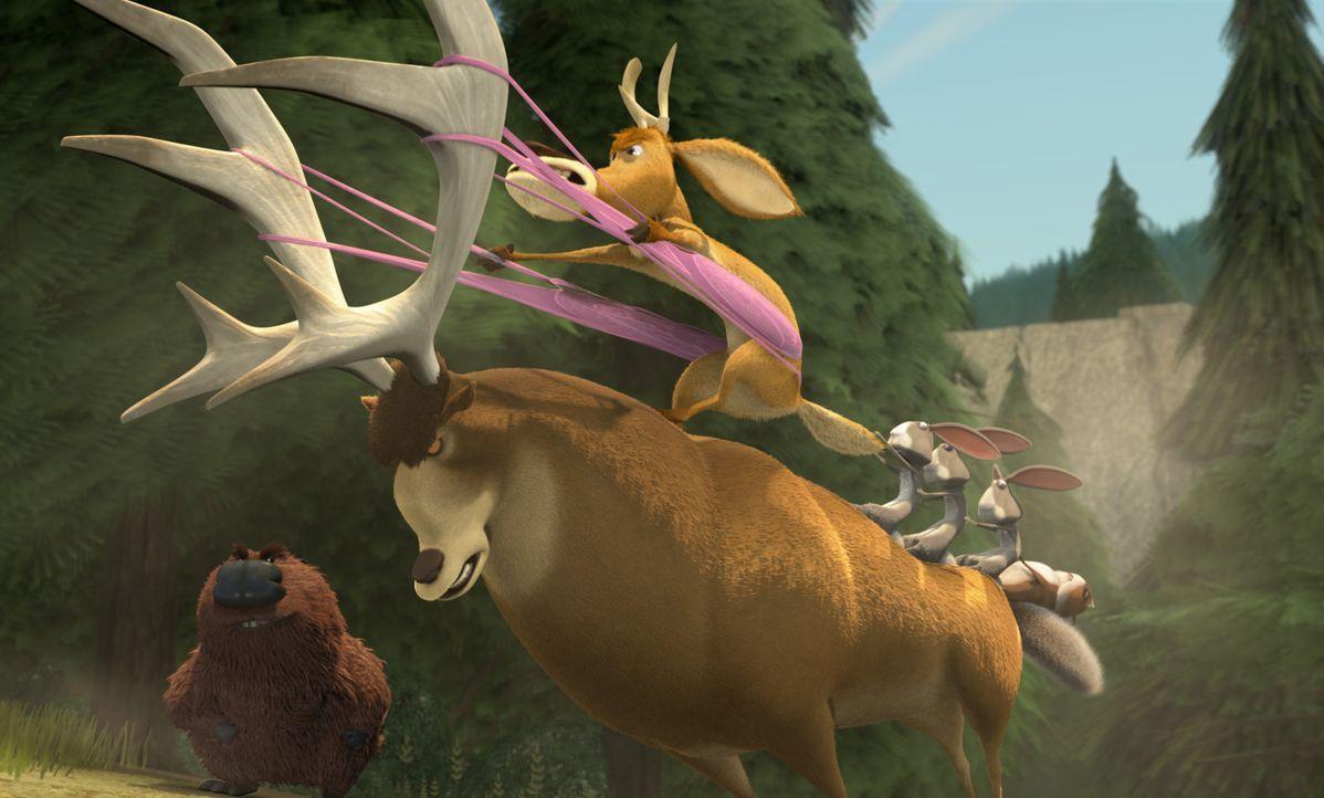 Der Hirsch Elliot (oben) und seine Freunde fahren harte Geschütze im Kampf gegen die Jäger auf ... - Bildquelle: Sony Pictures Television International. All Rights Reserved