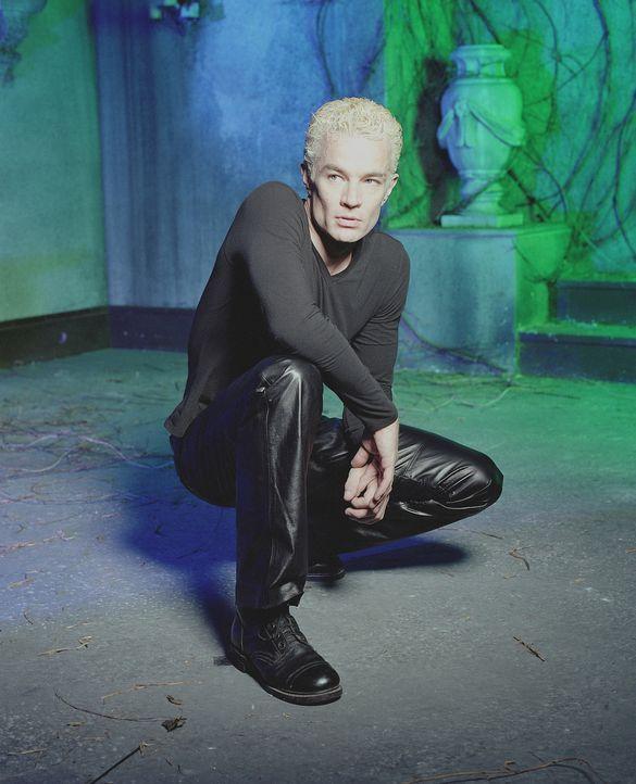 (7. Staffel) - Obwohl Spike (James Marsters) durch den Chip in seinem Hirn mittlerweile die Bösartigkeit genommen worden ist, hat er es noch faustdi... - Bildquelle: TM +   Twentieth Century Fox Film Corporation. All Rights Reserved.
