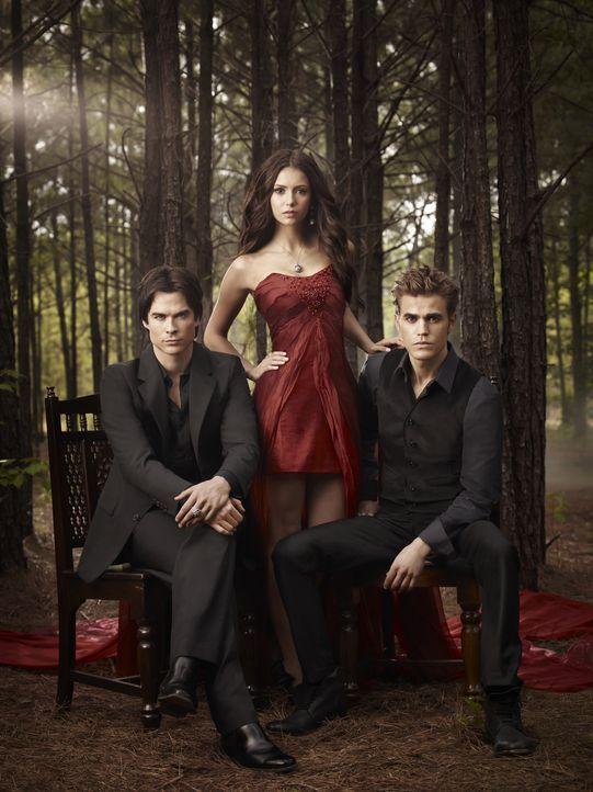 (2. Staffel) - Ein unschlagbares Trio: Damon (Ian Somerhalder, l.), Elena ( Nina Dobrev, M.) und Stefan (Paul Wesley, r.)... - Bildquelle: Warner Brothers