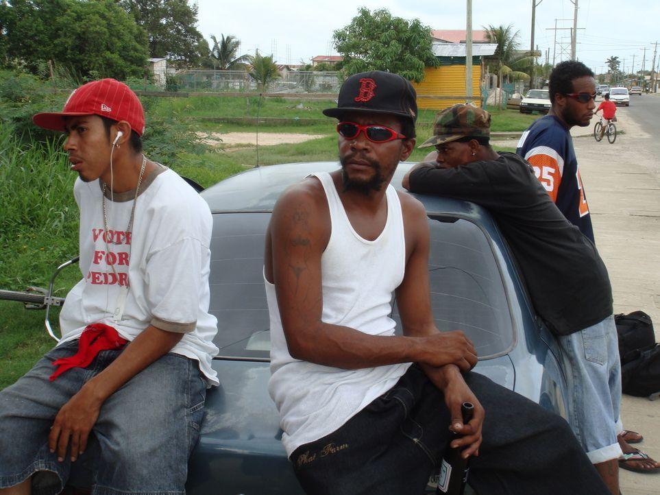Zusammen mit den mexikanischen und kolumbianischen Drogenkartellen ängstigen die Gangs, vor allem die George Street Crew, die Bevölkerung ... - Bildquelle: IMG Entertainment 2008