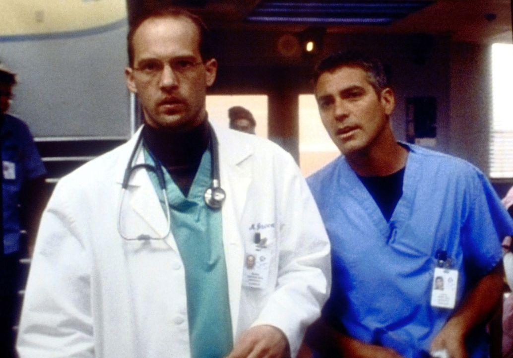 Frauengeschichten: Dr. Greene (Anthony Edwards, l.) und Dr. Douglas Ross (George Clooney, r.) ... - Bildquelle: TM+  2000 WARNER BROS.