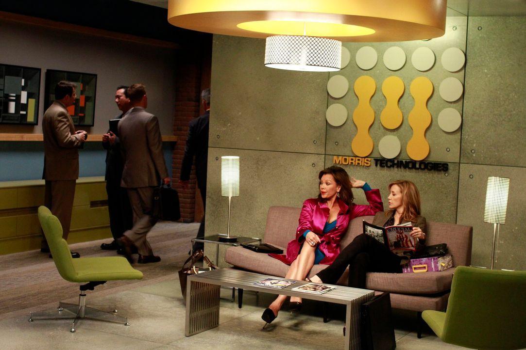 Tom möchte, dass Lynette (Felicity Huffman, r.) und Renee (Vanessa Williams, 2.v.r.) sein Büro einrichten, während Susan weiterhin versucht, Paul zu... - Bildquelle: ABC Studios