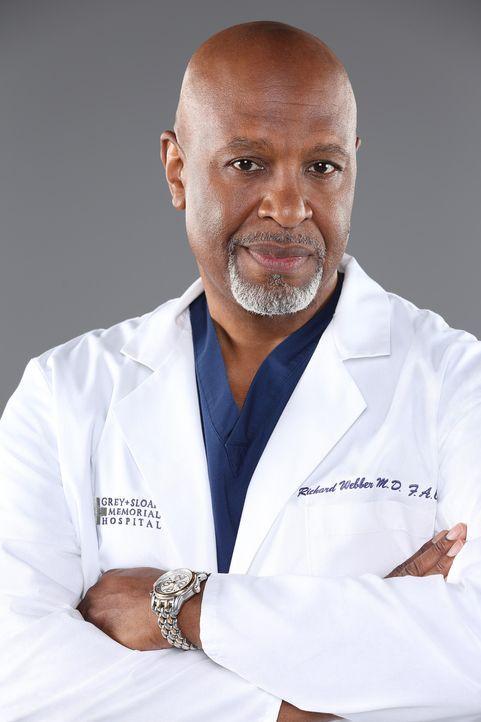 (11. Staffel) - Stets im Einsatz, um Leben zu retten: Dr. Richard Webber (James Pickens, Jr.) ... - Bildquelle: ABC Studios