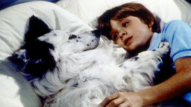 Zwischen Jake und dem Waisenkind Alex (Daniel Pintauro, r.) hat sich eine Fre...