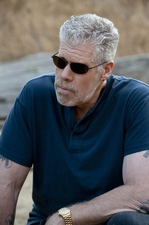 Clay (Ron Perlman) ist nach wie vor davon überzeugt, dass ein Rachefeldzug gegen die Neonazi-Gruppe unumgänglich ist ... - Bildquelle: 2009 Twentieth Century Fox Film Corporation and Bluebush Productions, LLC. All rights reserved.