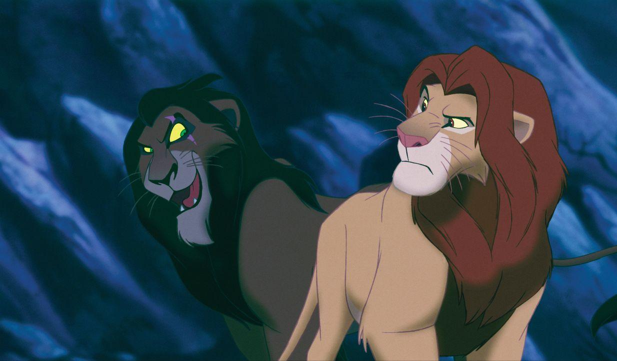 Kämpfen gegeneinander: Die Brüder Scar (l.) und Mufasa (r.) ... - Bildquelle: Disney
