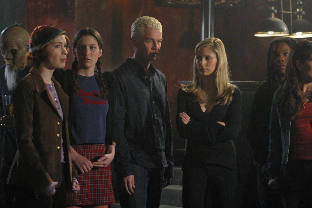 Die Macht des Bösen hat sich zurückgezogen. Dadurch haben Buffy (Sarah Michelle Gellar, 2.v.r.), Spike (James Marsters, M.) und ihre Freunde Zeit, w... - Bildquelle: TM +   Twentieth Century Fox Film Corporation. All Rights Reserved.