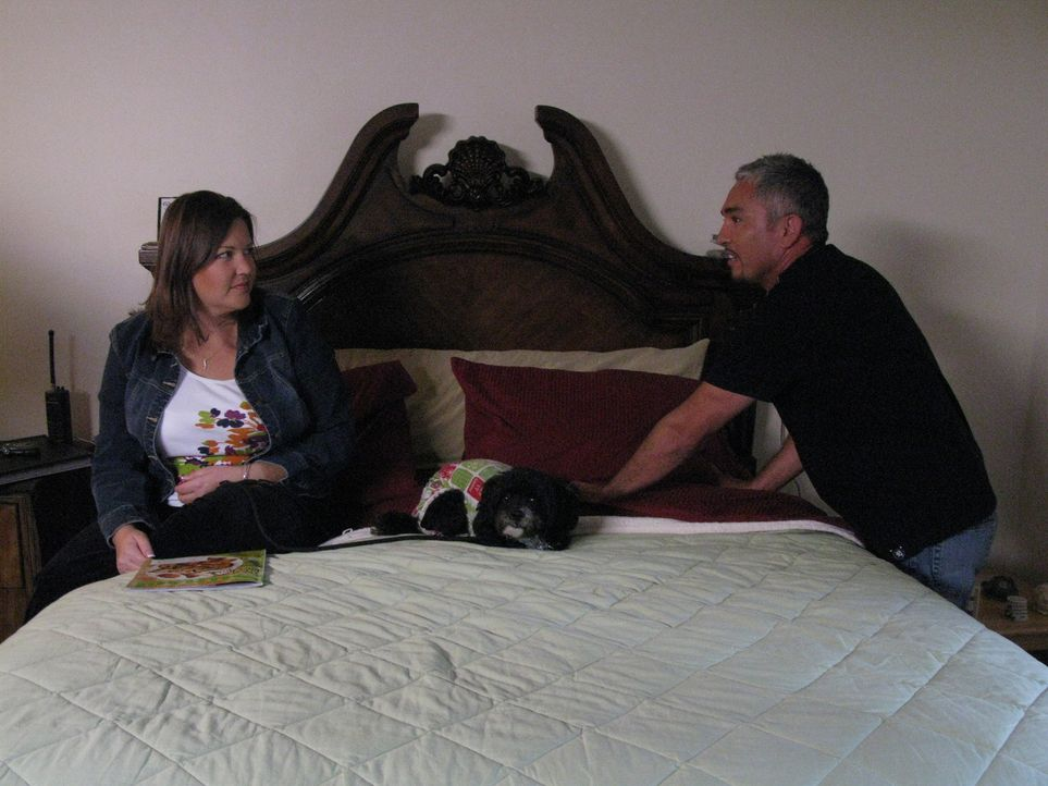 Cesar Millan (r.) hilft unter anderem Dena (l.), die Probleme mit ihrem Pudel-Mischling Phoebe hat ...