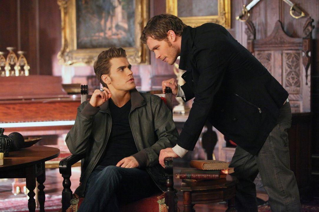 Der Streit zwischen Stefan (Paul Wesley, l.) und Klaus (Joseph Morgan, r.) geht weiter ... - Bildquelle: Warner Brothers