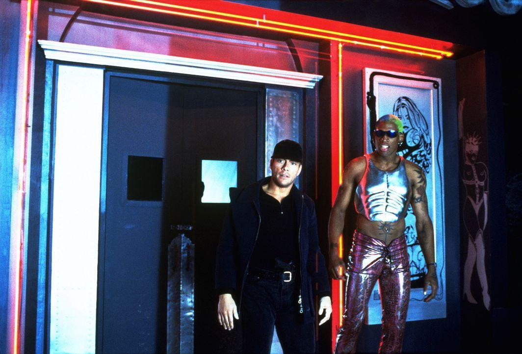 Geheimagent Jack Quinn (Jean-Claude Van Damme, l.) findet in dem total ausgeflippten Waffendealer Yaz (Dennis Rhodman, r.) einen zuverlässigen Freu... - Bildquelle: Columbia TriStar
