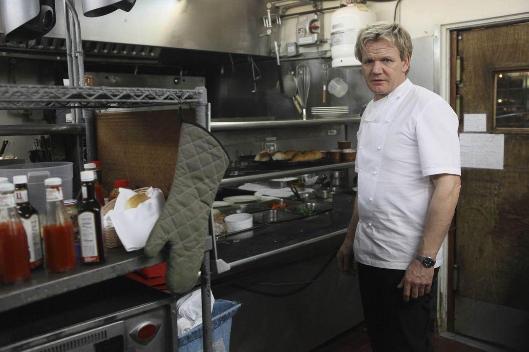 """Gordon Ramsay hilft dem Personal des """"La Frite"""", den Laden wieder in Gang zu bringen und neue Kunden anzulocken ... - Bildquelle: Fox Broadcasting.  All rights reserved."""