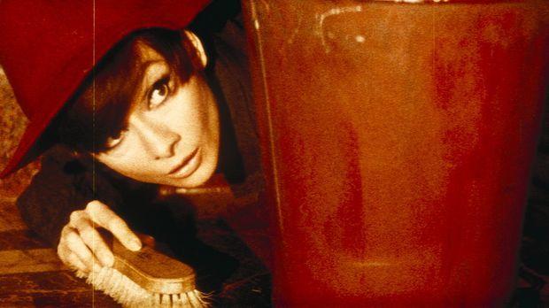 Nicole (Audrey Hepburn) ist fest entschlossen, die Familienehre diskret zu re...