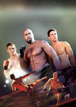 The Fighters: Beatdown - NEVER BACK DOWN 2 - Artwork - Bildquelle: 2011 Sony...