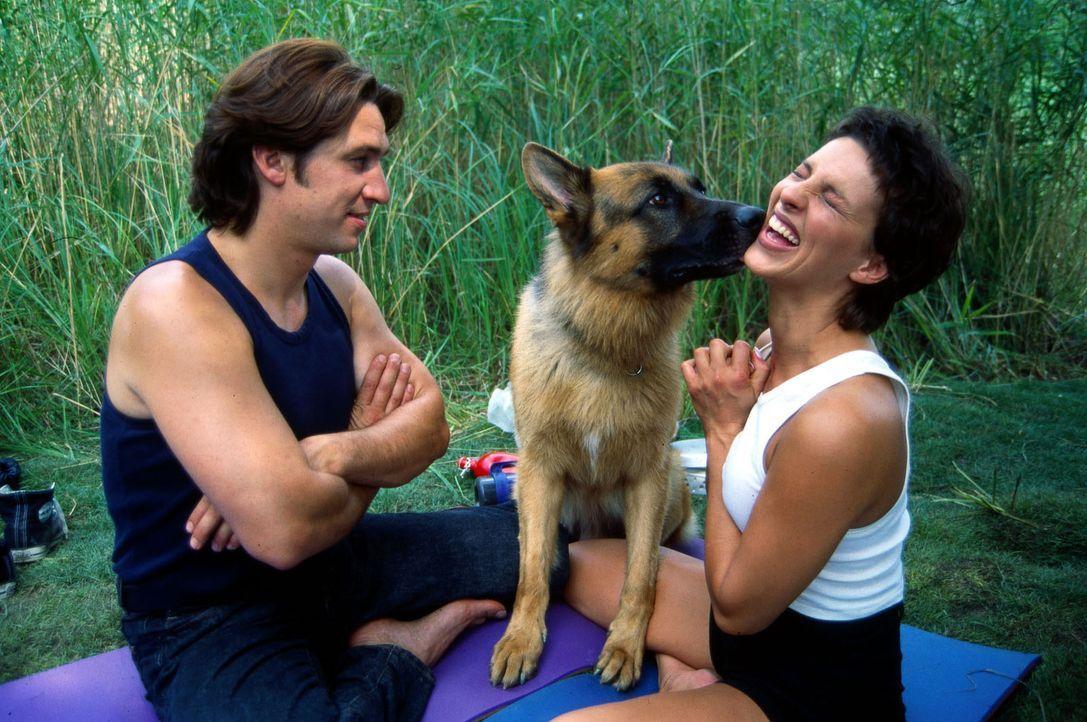 Kommissar Moser (Tobias Moretti, l.) muss sich von Rex zeigen lassen, wie man küsst. Moser will mit seiner hübschen Kollegin Elisabeth Böhm (Sabine... - Bildquelle: Ali Schafler Sat.1