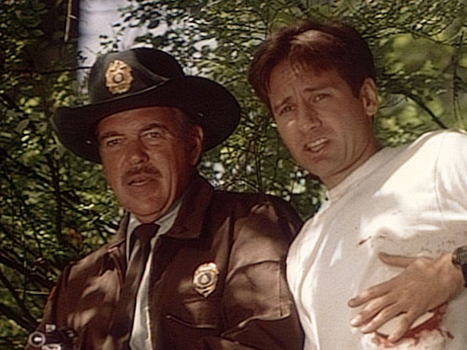 "Der FBI-Agent Mulder (David Duchovny, r.) und ein Ranger (Michael MacRae, l.) des Nationalparks von Jersey stehen fassungslos einer ""Tierfrau"" gegen... - Bildquelle: TM +   Twentieth Century Fox Film Corporation. All Rights Reserved."