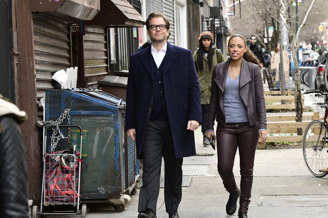 Nachdem Modedesignerin Nella Wester auf ihrer Modenschau vergiftet wurde, sind Bull (Michael Weatherly, l.) und Danny (Jaime Lee Kirchner, r.) auf d... - Bildquelle: John Paul Filo 2017 CBS Broadcasting, Inc. All Rights Reserved.