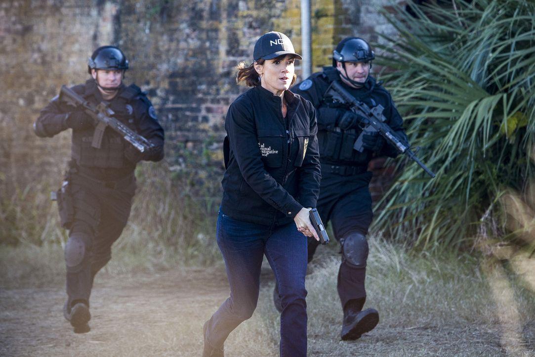 Will mit ihrem Team einen Drogenring auffliegen lassen, in den sich Sonja vor einigen Wochen ohne das Wissen ihrer NCIS-Kollegen eingeschleust hat:... - Bildquelle: Skip Bolen 2016 CBS Broadcasting, Inc. All Rights Reserved