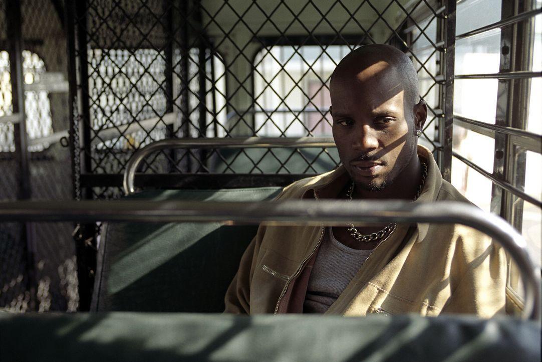 Als der Meisterdieb Tony Fait (DMX) zusammen mit seiner Gang ein Säckchen mit schwarzen Diamanten erbeutet, ahnt er nicht, welch Konsequenzen diese... - Bildquelle: Warner Bros.