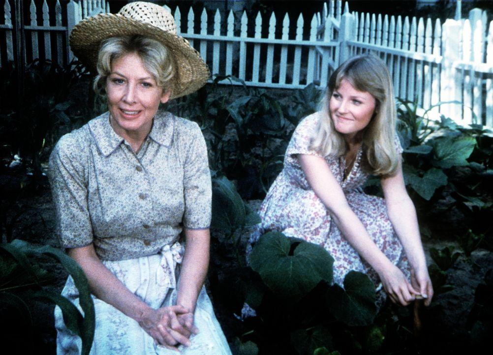 Olivia (Michael Learned, l.) und ihre Schwiegertochter Cindy (Leslie Winston, r.) bei der Gartenarbeit. - Bildquelle: WARNER BROS. INTERNATIONAL TELEVISION