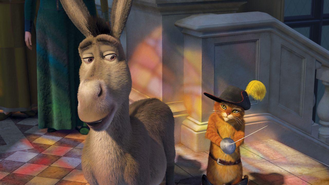Als König Harold stirbt, macht sich Shrek mit Esel und dem Gestiefelten Kater auf die Suche nach Arthur, dem einzigen möglichen Thronerben - mal abg... - Bildquelle: TM &   2007 Dreamworks Animation LLC