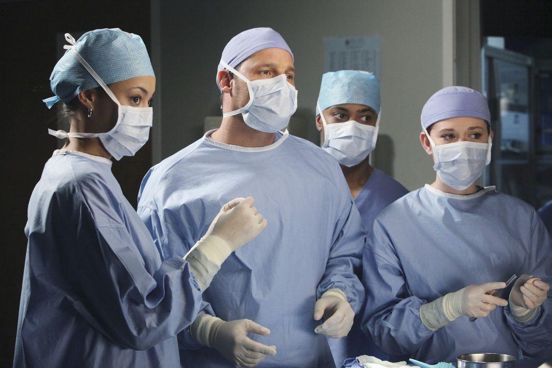 Richard Webber hat eine Reihe von Medizinstudenten im Schlepptau, die den jungen Ärzten über die Schulter schauen sollen. Meredith, April (Sarah D... - Bildquelle: ABC Studios