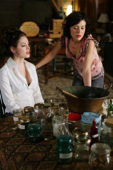 Charmed - Zauberhafte Hexen - Im Haus der Halliwells ist die Stimmung gereizt...
