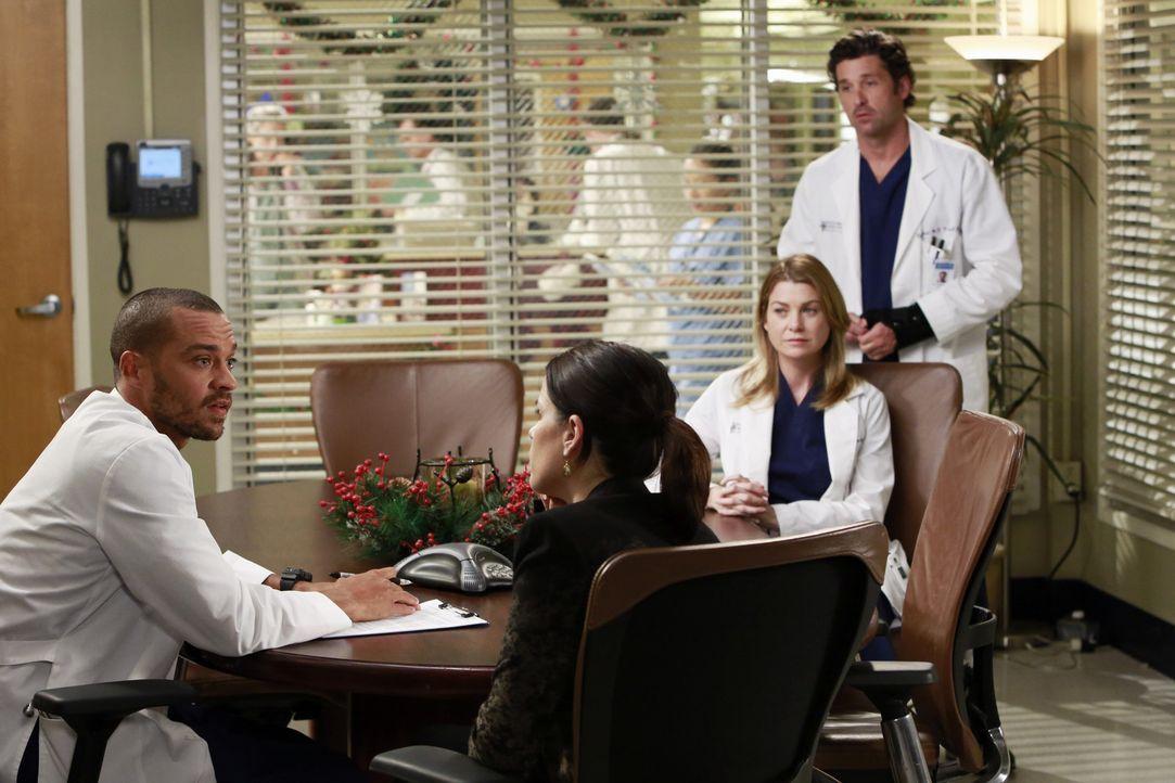 Während Lizzie (Neve Campbell, 2.v.l.) Meredith (Ellen Pompeo, 2.v.r.) gehörig die Meinung sagt, versucht Jackson (Jesse Williams, l.) Derek (Patr... - Bildquelle: ABC Studios
