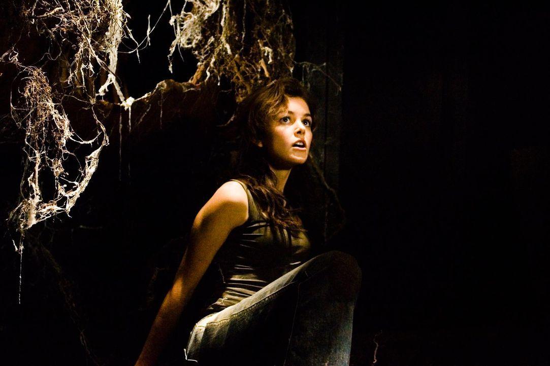 Im Zuge ihrer Ermittlungen kommt Christy (Nora Zehetner) einem dunklen Familiengeheimnis auf die Spur - mit tödlichen Folgen ... - Bildquelle: (2007) BY MTV FILMS AND PARAMOUNT PICTURES. ALL RIGHTS RESERVED.