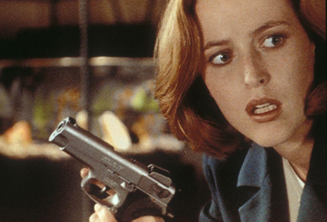 Scully (Gillian Anderson) entdeckt im Laufe ihrer Ermittlungen merkwürdige Computerdateien. - Bildquelle: TM +   Twentieth Century Fox Film Corporation. All Rights Reserved.